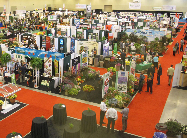 View of the 2013 CGC show